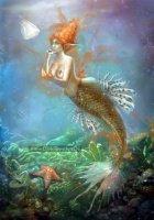 mermaid-discoveries-by-anne-pogoda