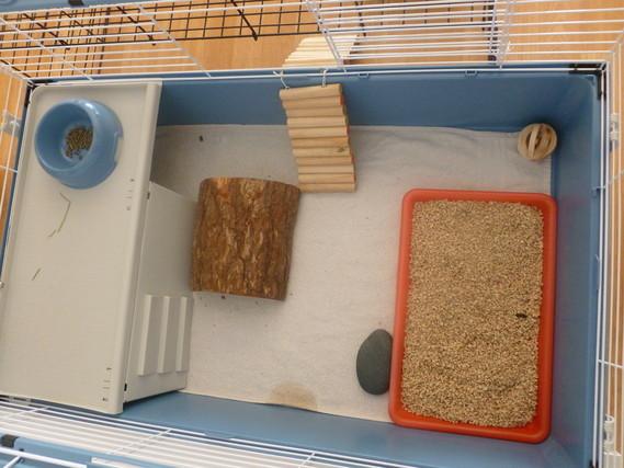 Interieur cage