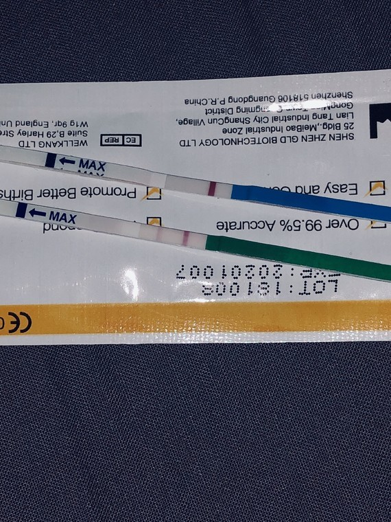 AADDD447-2D0B-4356-B16A-29D7F583E999