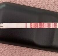 C33CD779-4022-482F-89ED-F5AA64A3E6F1