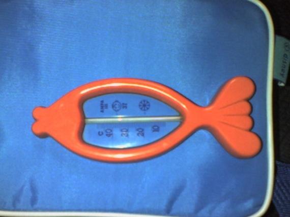 Thermomètre Bain 2€