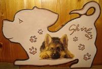 PLaque de porte chien joueur berger allemand poils longs