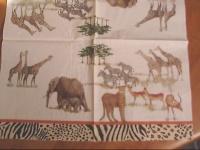 AFRIQUE 11