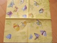 papillons 32