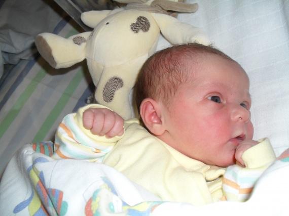 premiere photo de mon bebe