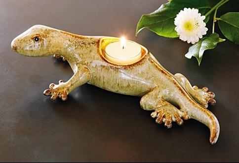 animals-tropical-gecko-big