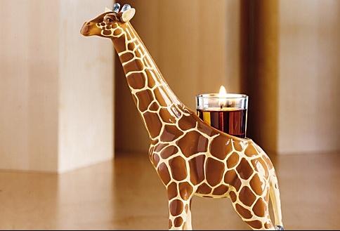 animals-african-giraffe-big