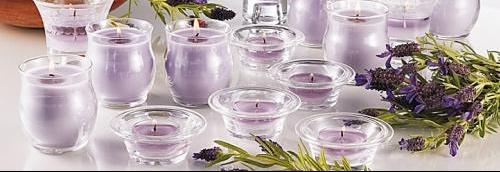 cat-herbal-lavender-big