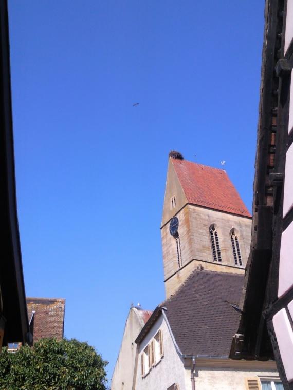 nid de cigogne sur toit