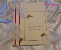 livre d'or ange et plumes