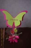 marque place papillon