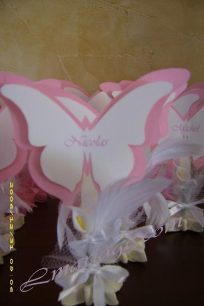 papillon7 1