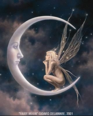 1fairy moon