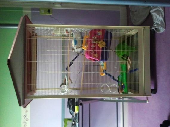 La cage :d