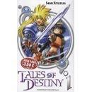 Tales Of Destiny Tome 1 Shinki Kitsutsuki