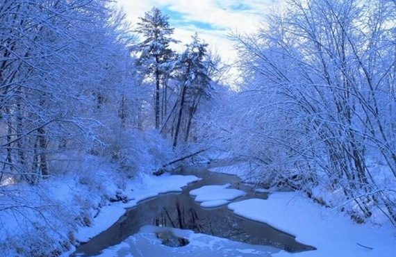 Joli paysage de neige
