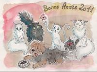 BONANE2011.jpg_1
