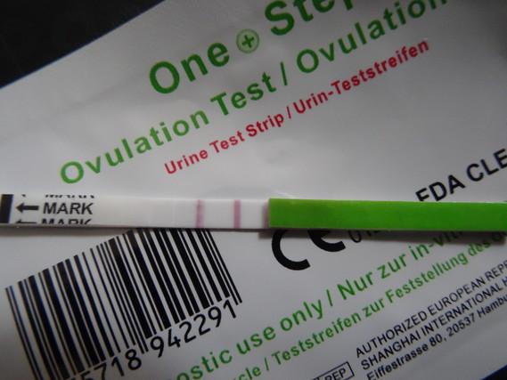 experience sur les tests d'ovulation avant la prise de