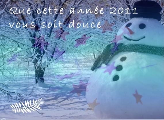 bonne année2011 2copy