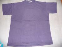 t-shirt T1 camaieu bleu 2€