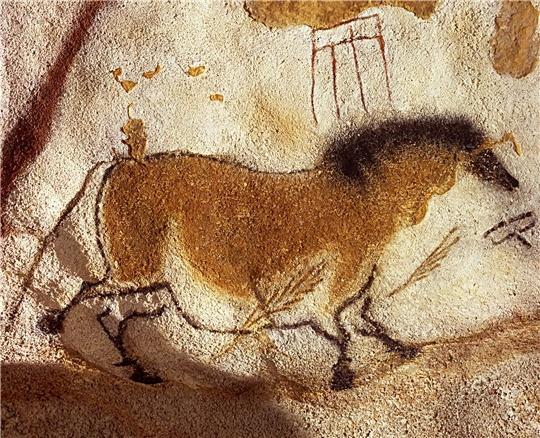 cheval-chinois-lascaux-5