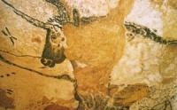 grotte-de-lascaux-peinture-rupestre