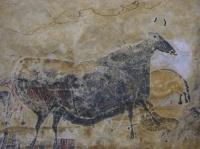 vache-noire
