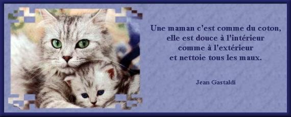 Une maman2