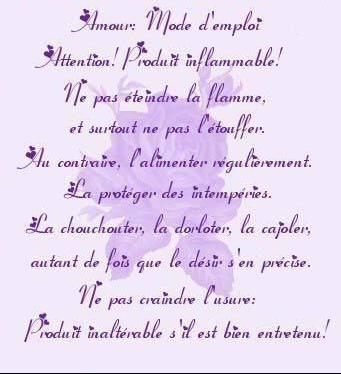 Amourmodedemploi1