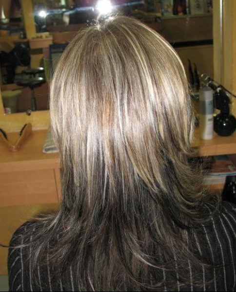 Degrade sur cheveux long de dos