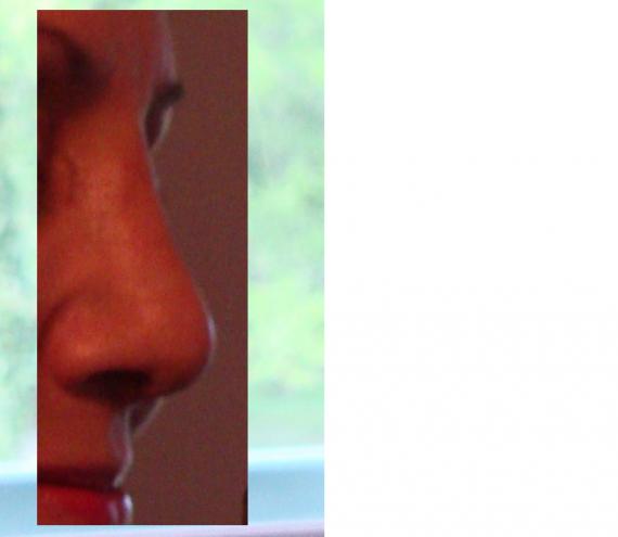 profil gauche