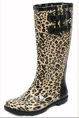 leopard1_diapo_main