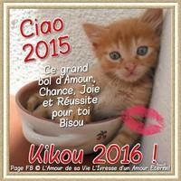 bonne-annee 2016