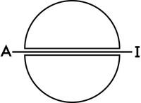 lele2012 - symbole