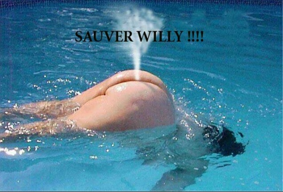 humour-willy