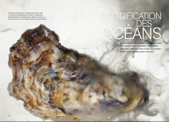 8-OCEAN_ACID-bis
