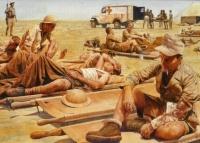 Guerre du Désert 41-42 (Steve Noon)