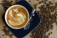 cafés (6)