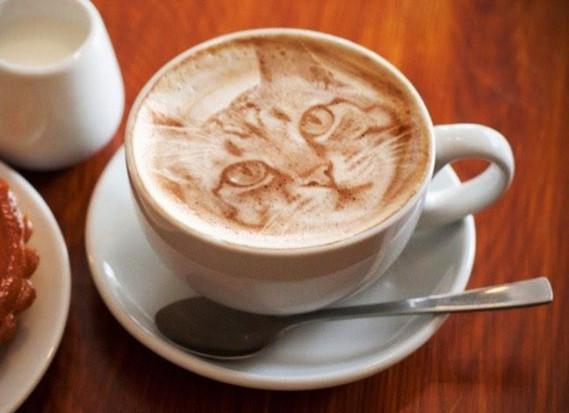 cafés (35)