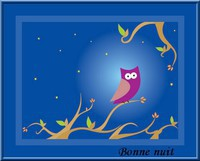 chouettes (45)