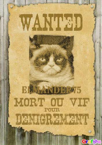 Wanted Elmander75
