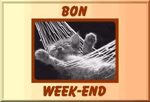 bon week chat
