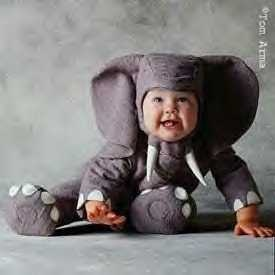 medium_elephant1