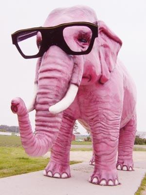 pink_elephant3