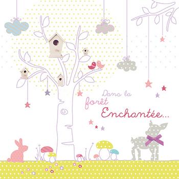 achats-bb-naissance-enchantee-fille3-img