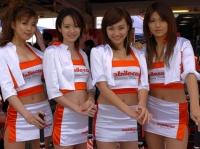 paddock girls 038