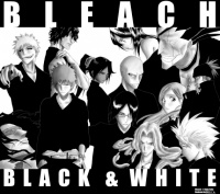 1218650157_Bleach-Black-white