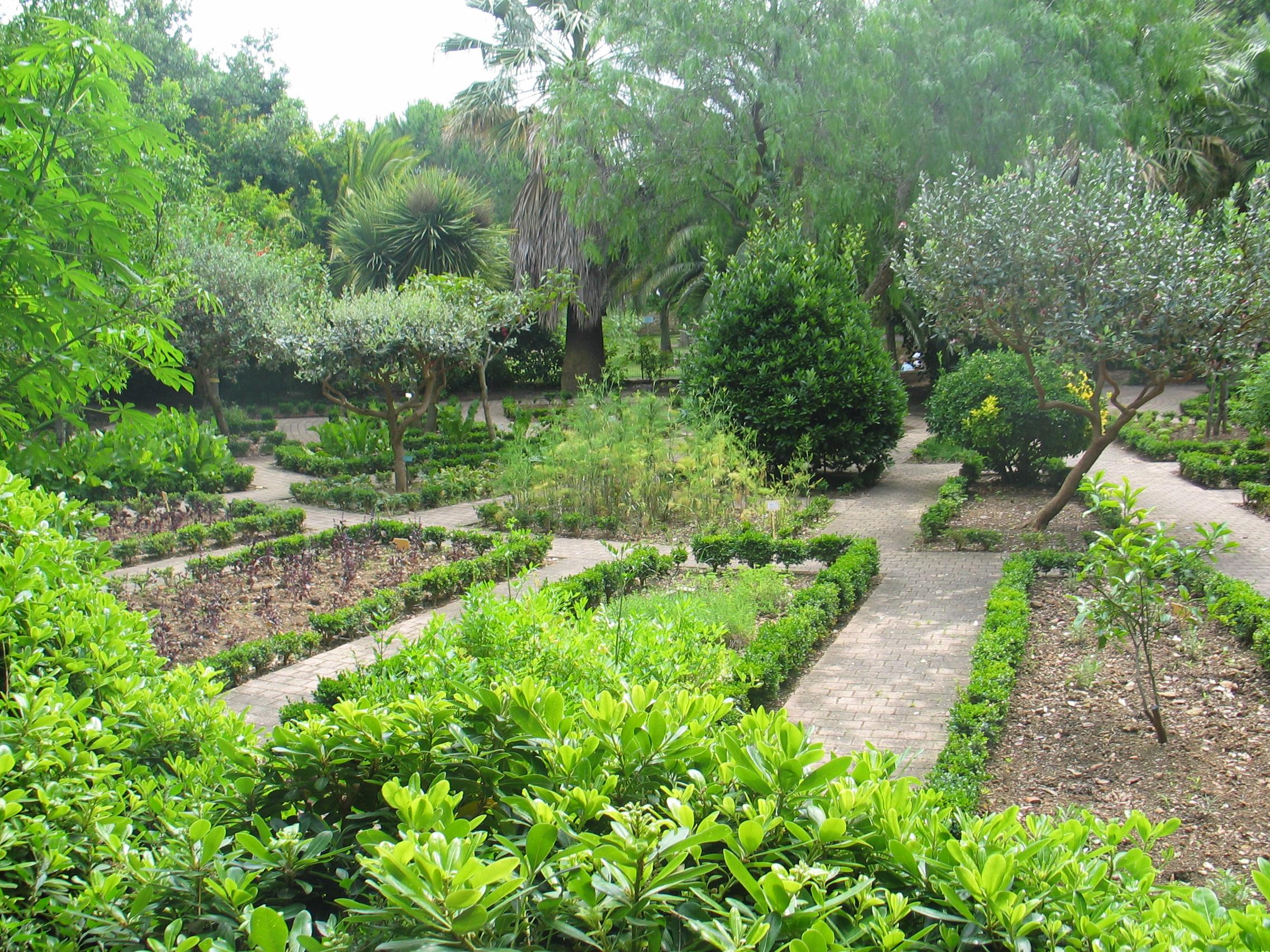 Jardins des plantes aromatiques parc du mugel juin 2008 for Jardin plantes aromatiques