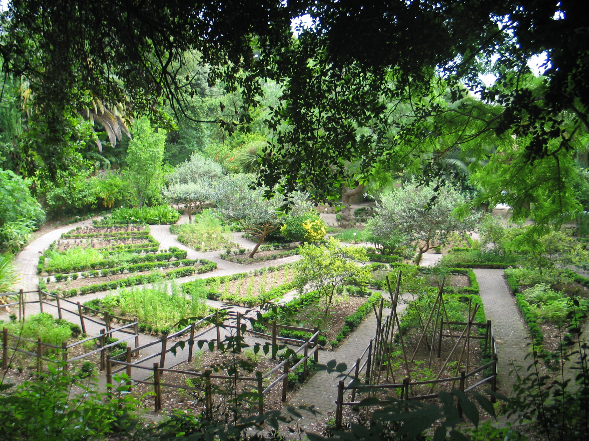 Le jardin des plantes aromatiques parc du mugel juin for Jardin plantes aromatiques