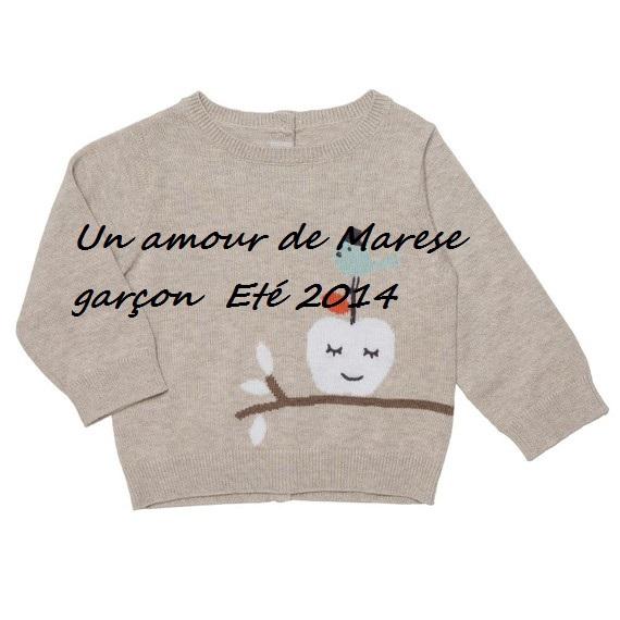 Un amour de Marese garçon  Eté 2014